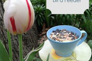 Craft for Kids Bird Feeder