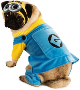 Minion Dog Costume Best Despicable Me Costumes For Halloween