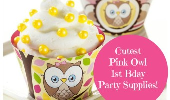 Pink Owl 1st birthday party supplies
