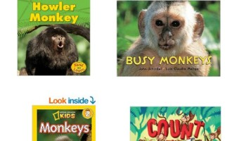 Must Have Monkey Kingdom Books