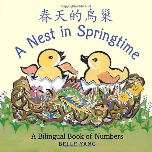 Nest in Springtime Spring Board Books for Babies