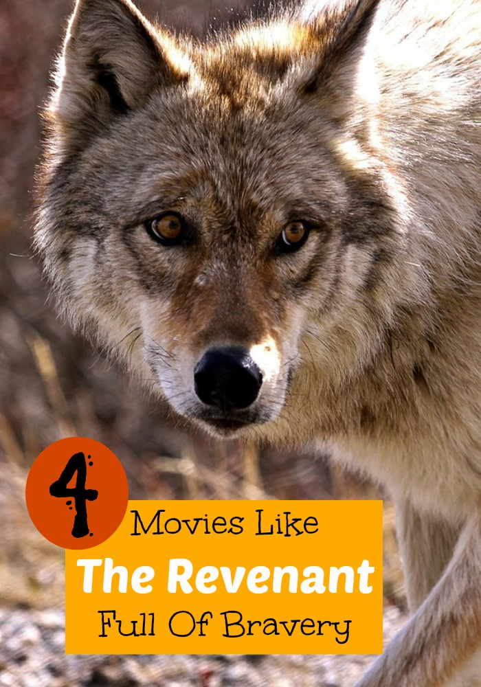 If you can't get enough of the Oscar-nominated movie The Revenant, you need to see our list of movies like The Revenant. Let the movie night begin!