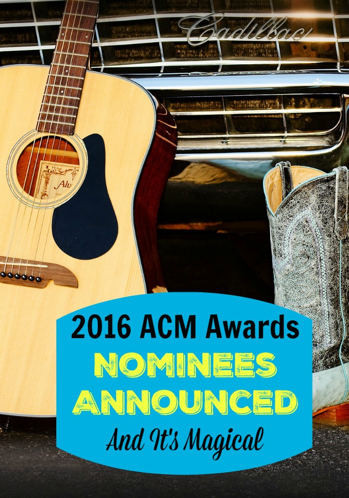 Only the best country music makes it to the 2016 ACM Awards. We have the list of swoon-worthy county nominees before you watch!