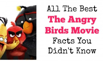 All The Best The Angry Birds Movie Facts You Didn't Know