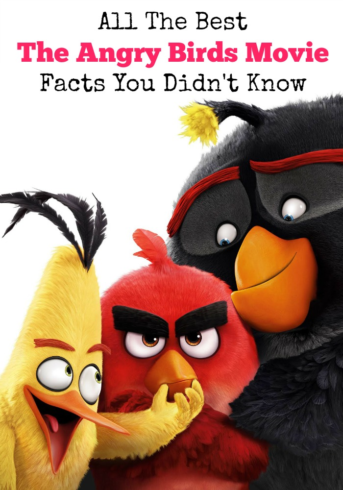 Think you know all of The Angry Birds movie facts? Do you know why the new birds suddenly have wings? Which of The Angry Birds are not angry? Find out now!