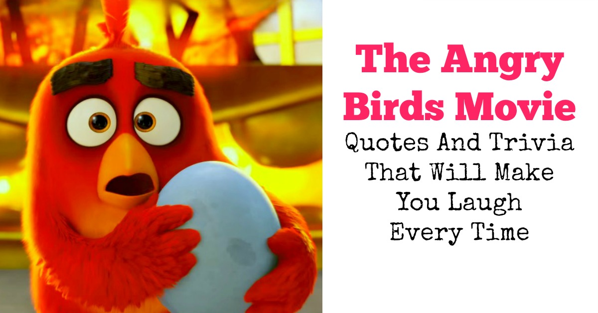 The Angry Birds Movie Quotes And Trivia That Will Make You Laugh