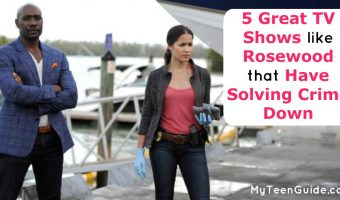5 Great TV Shows Like Rosewood That Have Solving Crime Down