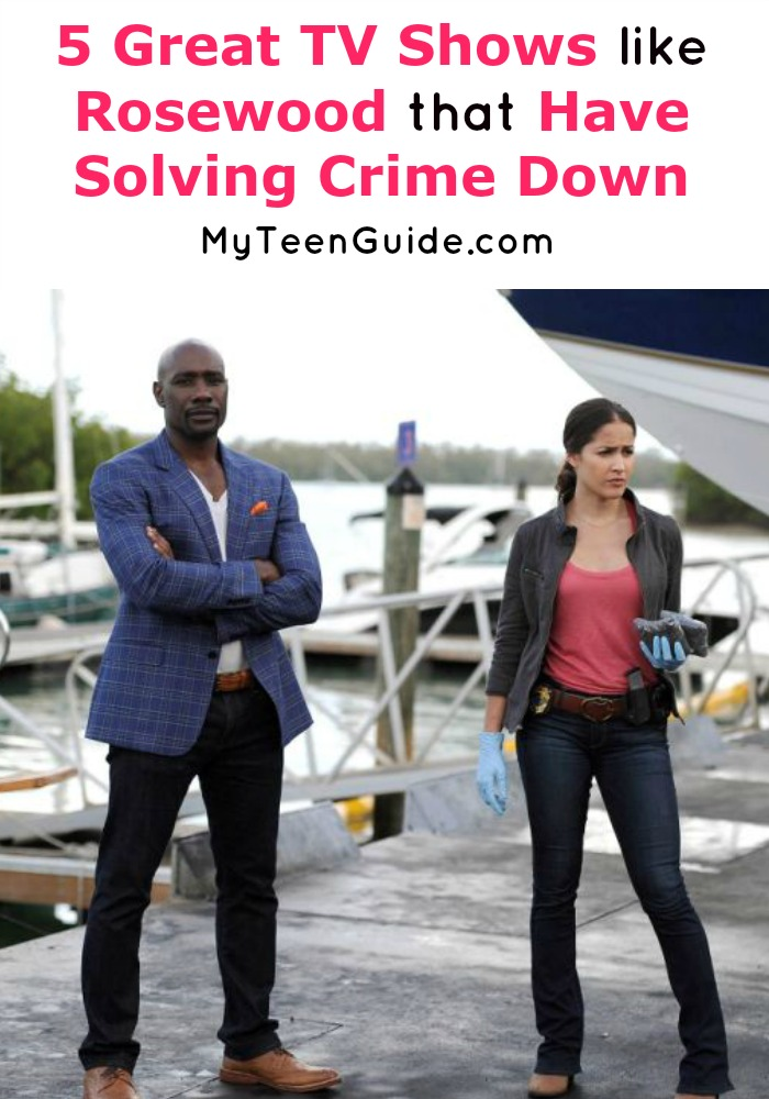 Lies, tricks, and cons! You have to see these shows like Rosewood where the crime keeps coming but the law enforcement is sharper.