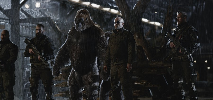 7 War For The Planet Of The Apes Movie Quotes That Will