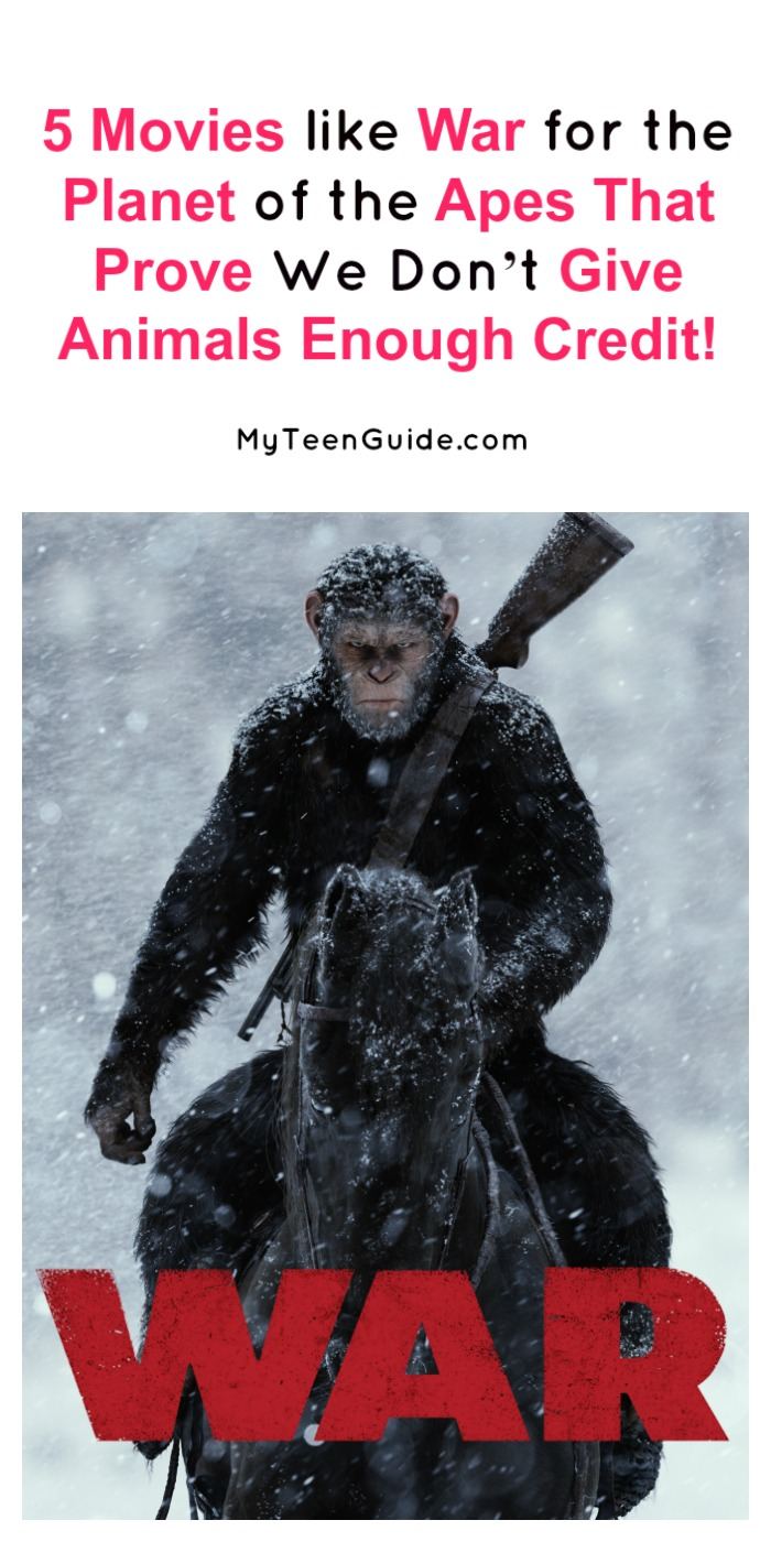 Looking for more movies like War for the Planet of the Apes that prove we just don't give animals enough credit? Check out these 5 flicks that will make you look at monkeys in a whole new way!